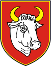 Coat of arms of Człuchów