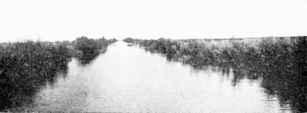 PSM V70 D011 Main canal east of calexico dec 16 1904.png