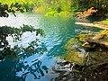 Paisaje en el Cenote Azul, Q. Roo, México. - panoramio.jpg