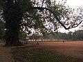 Parade Ground Near Bishop House, Fort Kochi IMG 20180916 162508.jpg