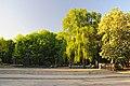 Park Pushkina KYIV-168.JPG