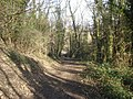 Path down to the main road - geograph.org.uk - 753943.jpg