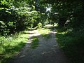 Path junction at Malvern Common - geograph.org.uk - 993017.jpg