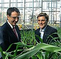 Pawlenty in greenhouse (5979461059).jpg
