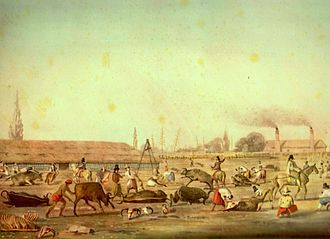 Agriculture in Argentina - Impression of a Buenos Aires slaughterhouse by Charles Pellegrini, 1829.