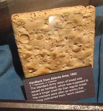 Hardtack - A preserved hardtack at a museum display