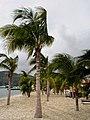 Philipsburg, Sint Maarten (Netherlands Antilles) - the southern half of the Caribbean island of Saint Martin - panoramio (6).jpg