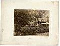 Photo of Longfellow House's north ell, 1904 (a2fd8d5f-a6da-416f-9ba2-cbe58c5f70c3).jpg