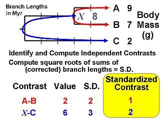 Phylogenetic comparative methods Wikipedia