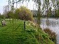 Picnic area North end of Merricks Lake - geograph.org.uk - 756720.jpg