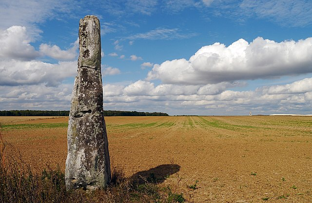8th place: Menhir in Milly-la-Forêt, Essonne, by Poulpy