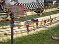 Pig racing at 2008 San Mateo County Fair 4.JPG