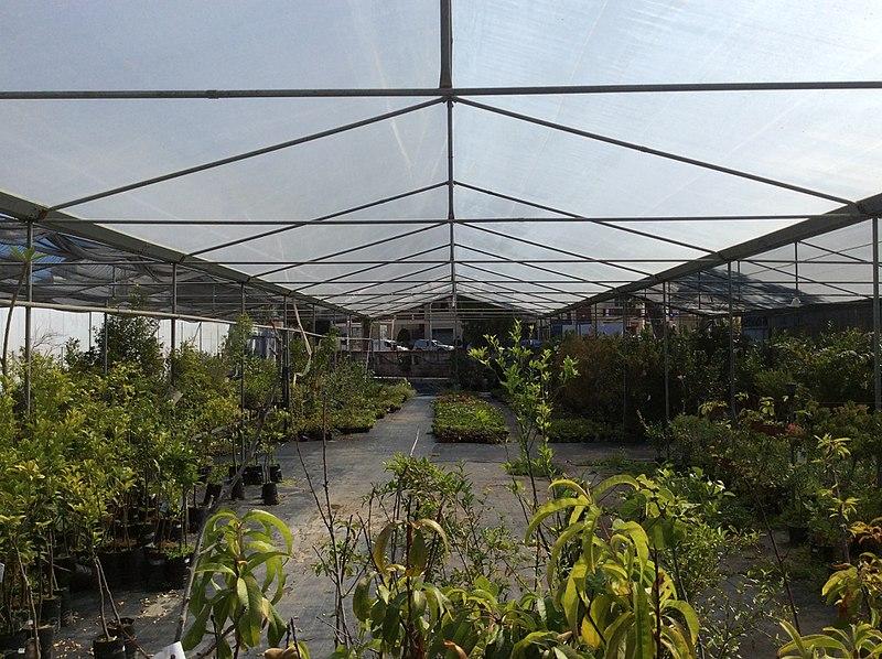Garden Centre: File:Piscopo Gardens Centre 08.jpg