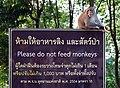 Please do not feed monkeys Koh Chang.jpg