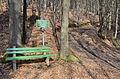 Poertschach Bannwaldweg Adler-Rast 03032014 765.jpg