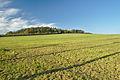Pohled na vrchol Strážná, Myslejovice, okres Prostějov.jpg