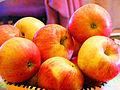 Pommes Gala.JPG