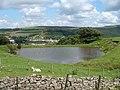 Pond near Cefn Golau Cemetery - geograph.org.uk - 498731.jpg