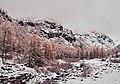 Pont, Valsavarenche Valley (37551096165).jpg