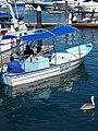 Port Scene - Cabo San Lucas - Baja California Sur - Mexico - 03 (23444205981).jpg