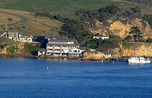 Portobello Marine Laboratory - Portobello Marine Laboratory viewed from Port Chalmers.