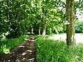 Private road to Flakebridge and Brackenthwaite (geograph 5032224).jpg