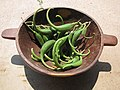 Proboscidea parviflora - double claw. fresh green fruit in wood bowl 01.jpg