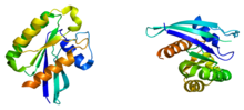 Protein RAB21 PDB 1yzt.png