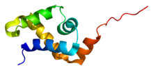 Protein SATB1 PDB 1yse.png