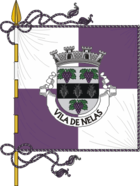 Flag of Nelas