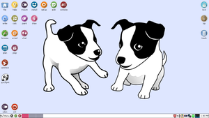 Live USB - Puppy Linux, an example of an operating system for live USBs.