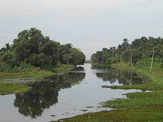 Thrissur Kole Wetlands - Puzhakkal River, one of the rivers which go through the Kole Wetlands and provide water for rice cultivation