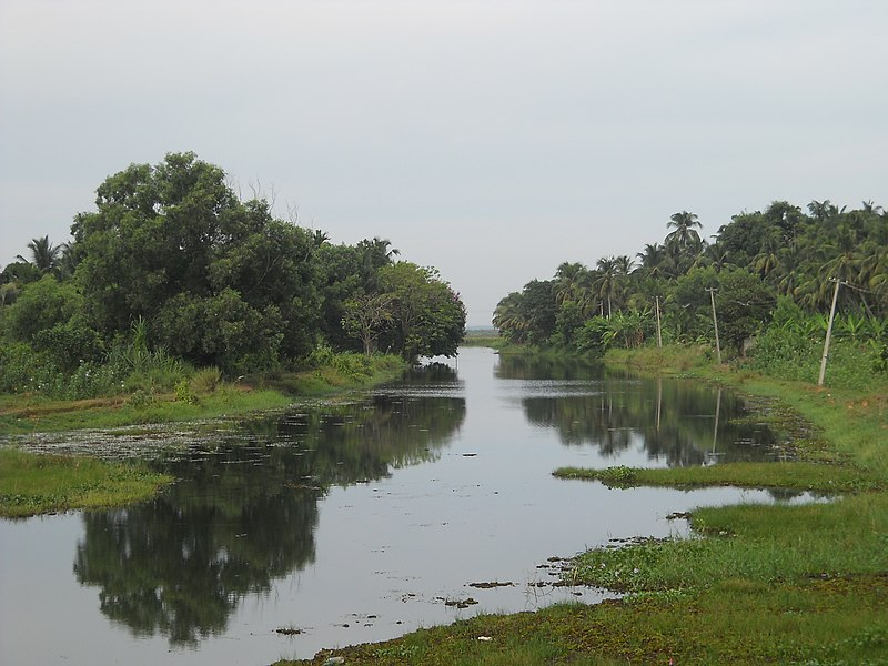 File:Puzhakkal river tourism 4.jpg