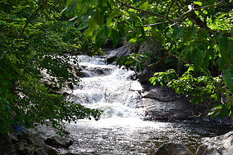 Quarry Falls (Macon County) - Quarry Falls in Summer