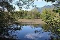 Réserve naturelle Marais Lavours Aignoz Ceyzérieu 123.jpg
