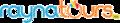 Rayna logo.png