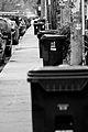 Recycling in Toronto.jpg