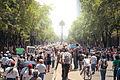 Retaguardia de la Marcha Anti Peña 10 de Junio, 2012 (7174087179).jpg