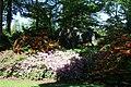 Rhododendronpark Bremen 20090513 269.JPG