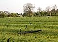 Ridge and furrow, Kites Hardwick - geograph.org.uk - 1270674.jpg
