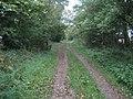 Ridgeway on Whitefield Hill - geograph.org.uk - 1015026.jpg