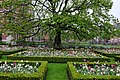 Rijksmuseum Garden (41808103055).jpg