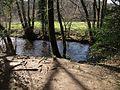 River Bovey, Parke - geograph.org.uk - 1209844.jpg