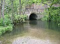 River Frome under the railway - geograph.org.uk - 437548.jpg