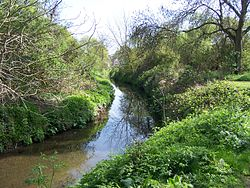 River Pinn, Ickenham - April 2011.JPG