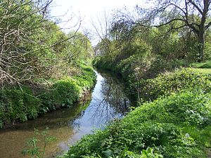 River Pinn - The river in Ickenham