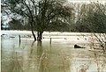 River Windrush in flood - geograph.org.uk - 1546457.jpg