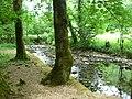 Rivière (Les Planches-près-Arbois) (2).jpg