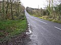Road at Florence Court - geograph.org.uk - 1061265.jpg
