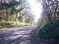 Road to Telpyn - geograph.org.uk - 1293934.jpg